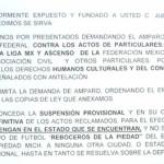 Preparan demanda en contra de la FMF