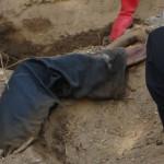 Encuentran en fosa a jóvenes desaparecidos del Bar Heaven en México