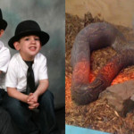 Serpiente estrangula a dos niños mientras dormían