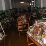 11 municipios inundados por lluvias en Guanajuato; Pénjamo, Silao y San Felipe los más afectados
