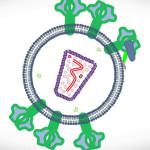 Descubren molécula que podría ponerle fin al VIH