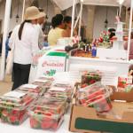 """""""Mercado de la Fresa"""", a un paso de estrenar terreno"""