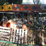 """Zoológico de Irapuato """"sobrevive"""", hay pocos apoyos"""