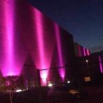 El Parque Guanajuato Bicentenario se pinta de rosa