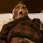 Anciana momifica el cadáver de su esposo en Bruselas