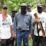 Autodefensas y Gobierno: trabajando de la mano