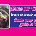 """""""¡Matan por diversión!"""", controvertidas imágenes de Lucero en plena cacería"""