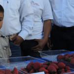 Irapuato y sus fresas; 467 años
