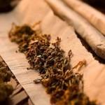 El PRD propone legalizar la marihuana en el DF