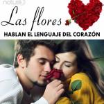 Las flores hablan el lenguaje del corazón