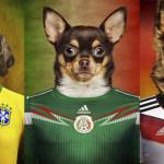 """Se puso """"perro"""" el mundial"""