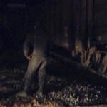 Muere al tratar de ganarle el paso al tren, en Abasolo (video)