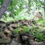 Los Chiqueros centro ceremonial olvidado y depredado