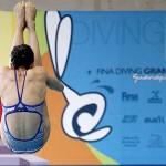 Grand Prix FINA Guanajuato 2014