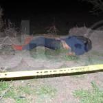 Muere atropellado en la carretera a Malvas