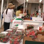 Segundo Festival de la Capital Mundial de las Fresas