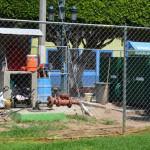 Suministro irregular de agua, pega a vecinos del Centro de Abasolo