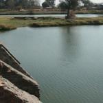 """Encuentran los cuerpos de las personas """"ahogadas"""" en el río Lerma"""