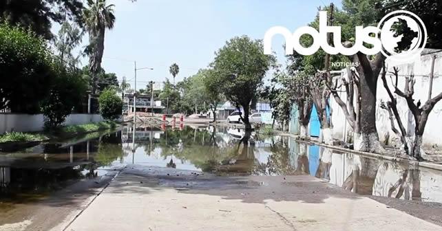 Photo of Problemas en Los Olivos por construcción de calle, eran de esperarse: OP
