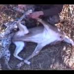 CNDH emite recomendación por caso de cazadores leoneses desaparecidos en Zacatecas