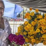 La flor de Cempasúchil una flor de vida entre los muertos