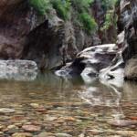 En Cuerámaro la naturaleza es parte de su belleza