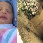 Rescatan a bebé arrojado a una alcantarilla por su propia madre (video)
