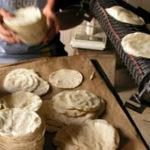 Tortillleros, continuan desprotegidos