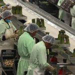 Venció plazo establecido por la Ley para que trabajadores reciban su aguinaldo