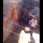 """""""Así se bañan a los locos"""", el video que causa indignación por maltrato infantil"""