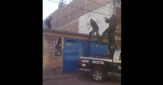 policias perro leon