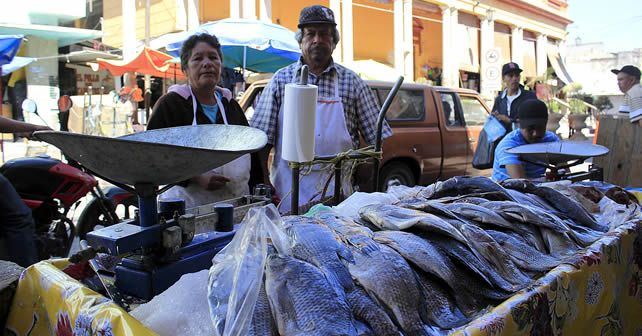 venta_pescado_mercado_penjamo_notus