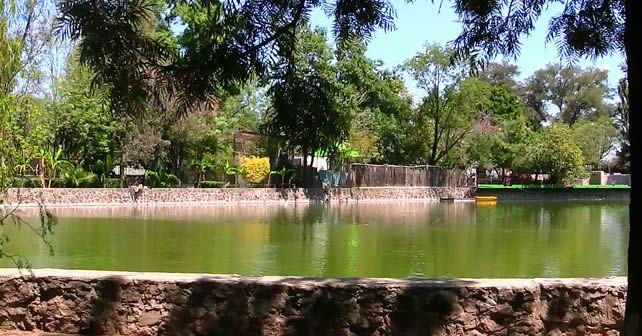 """Photo of """"Zoológico de Irapuato siempre ha sido dirigido por particulares"""": Victor Zanella"""