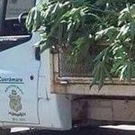 Usan recursos públicos para limpiar barda de fiestas de candidato del PRD en Cuerámaro
