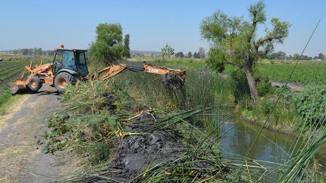 Photo of Concluye JAPAMI limpieza de cauces y canales