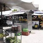 Se inundan fruteros del Centro de Irapuato