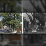 Calzada de Guadalupe, marca el pasado y presente de Irapuato