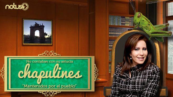 Barbara Botello Chapulines Portada