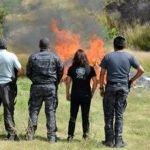 PGR incinera más 700 kilos de drogas