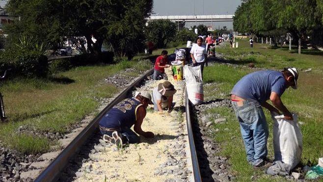 tren (3)
