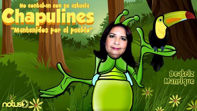 Beatriz Manrique Chapulines Portada