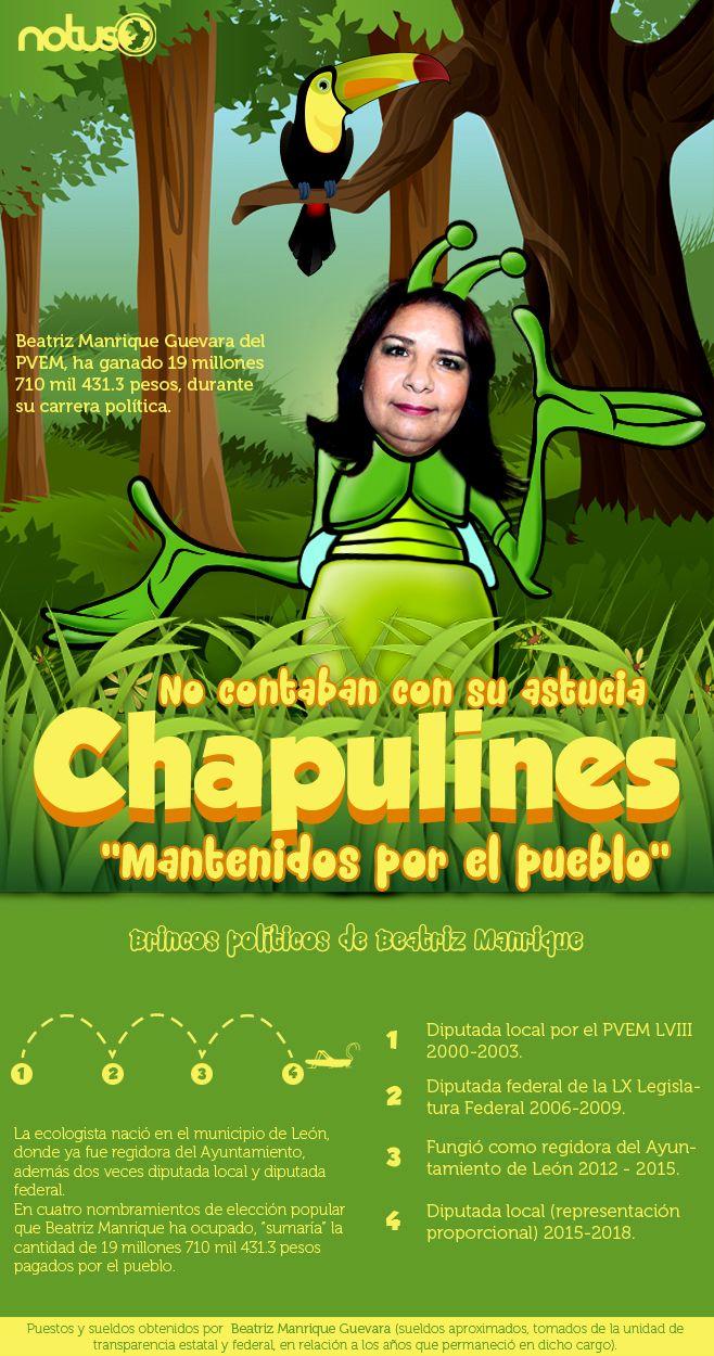 Beatriz Manrique Chapulines1
