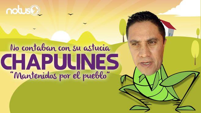 Chapulin Rene Portada
