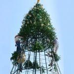Instalaran árbol navideño