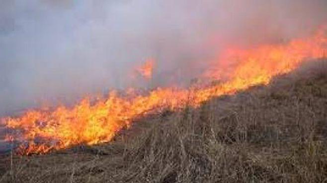 incendio paztizales abasolo