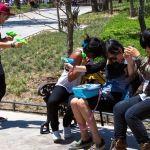 En México, más ninis más homicidios: BM
