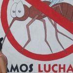 Gobernador de Florida declara emergencia sanitaria parcial por Zika