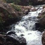 """Visita paisajes naturales, """"revive"""" tradiciones o refréscate en Cuerámaro"""