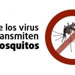 Virus transmitidos por sancudos