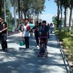 Proponen reforestar árboles en espacios públicos